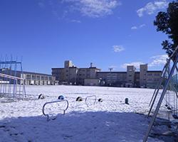 校庭から見る校舎(松陽小)